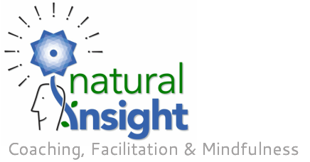 Natural Insight Coaching